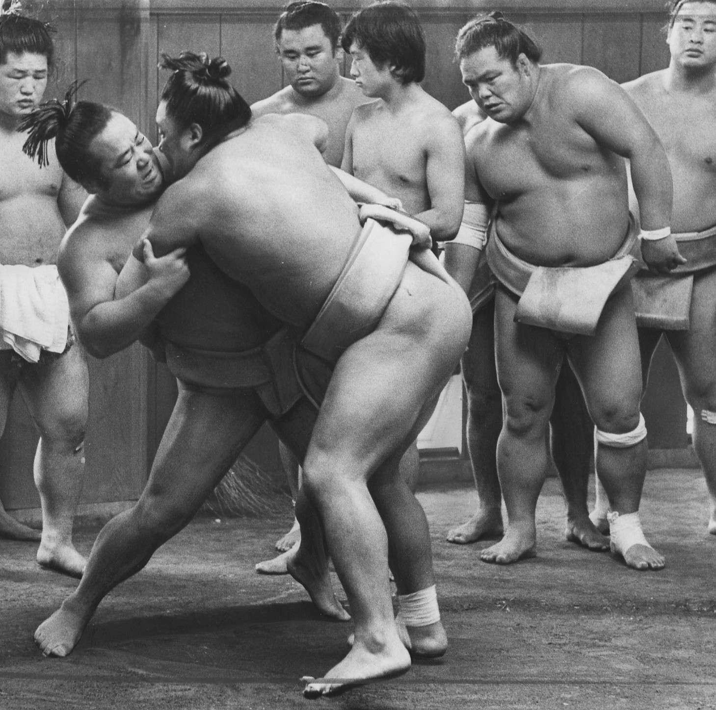 ざく 相撲 こと ら