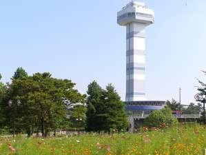 公園へ訪れたら展望タワーはぜひのぼっておきたい。冬には園内全体がイルミネーションで輝き、展望タワーから見る景色も幻想的な眺めへと変わる。