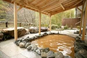 炭酸を多く含んだ茶褐色の湯が特徴で、美肌効果に優れていると言われている。