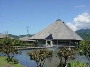 美術館では作品のほか、コーヒーやハーブティーが飲める喫茶コーナーや、約千匹の鯉が飼育されている池、 四季折々の草花を楽しめる庭園がある。